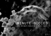 Minutes Bodies