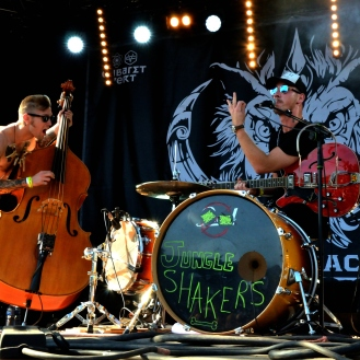 The Jungle Shakers - Pic by Vicky Chleide